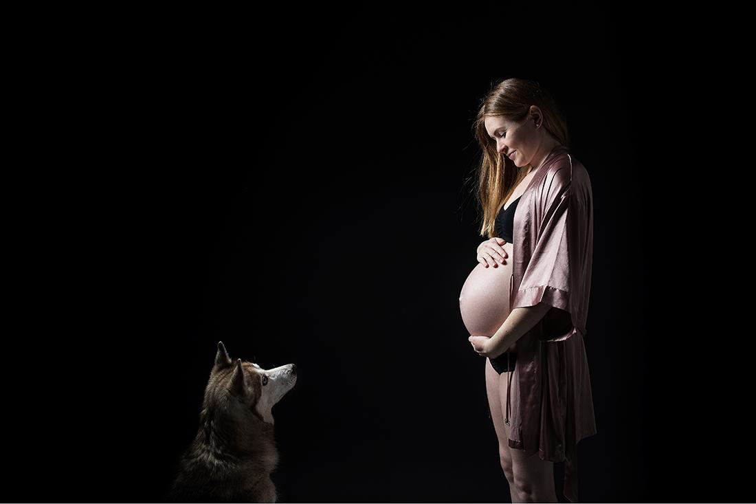 Husky auf Babybauchfotos_Berlin © Miriam Ellerbrake, 2018