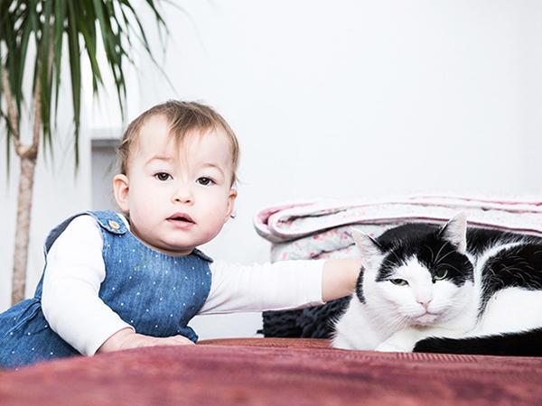 Baby mit Katze_Familienreportage_Little Monkey Fotografie_Berlin © Miriam Ellerbrake
