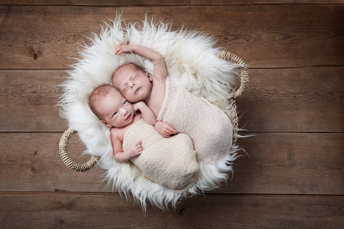 Neugeborene Zwillinge Babyfotografie IMG_9830_176 © Litle Monkey Fotografie, Berlin