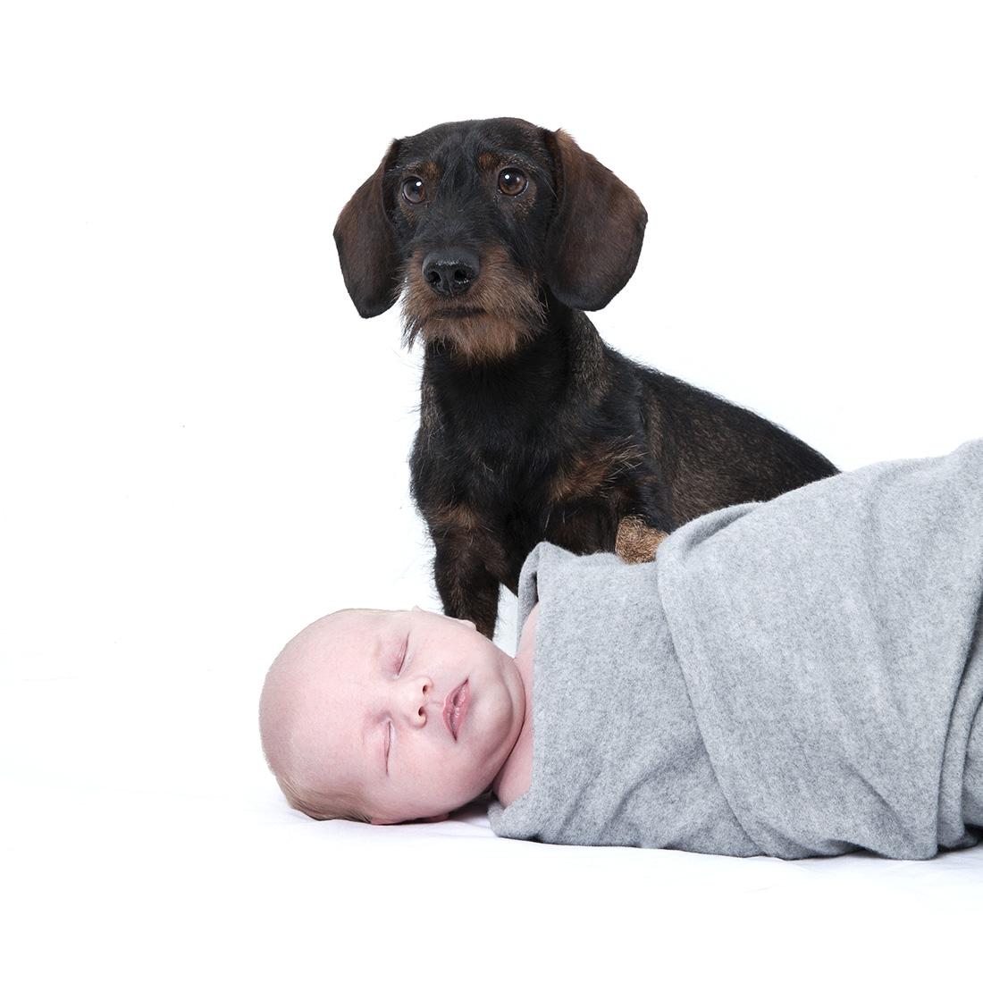 Neugeborenenes_mit_Hund_Babyfotografie_Berlin © Miriam Ellerbrake Berlin